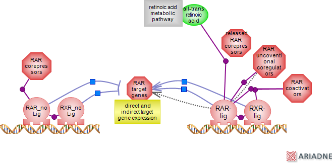 Dictyosome 2 3 2 Annotate The Diagram From 2 3 1 With The Functions Of